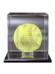 Softball Display Case with Mirror BackClear attractive display for that special Softball. Mounted on a ebony-acrylic base to showcase that special achievement while keeping your cherished memory protected. Call 800-830-3386 to buy now!