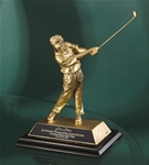 Cast Resin Golfer w/ Antique Gold Finish. This 8 cast golfer makes the perfect low-cost award to meet any budget and yet provides detail common to the higher -end golf sculptures. Engraving plate provided on base for personalization.Additional Charges For Engraving and Logos